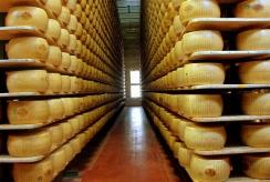 Seniausias pasaulio delikatesas – jo didenybė sūris