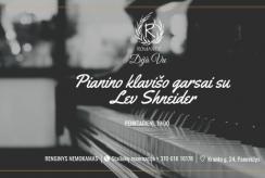 Užburiantys pianino Garsai Deja Vu restorane